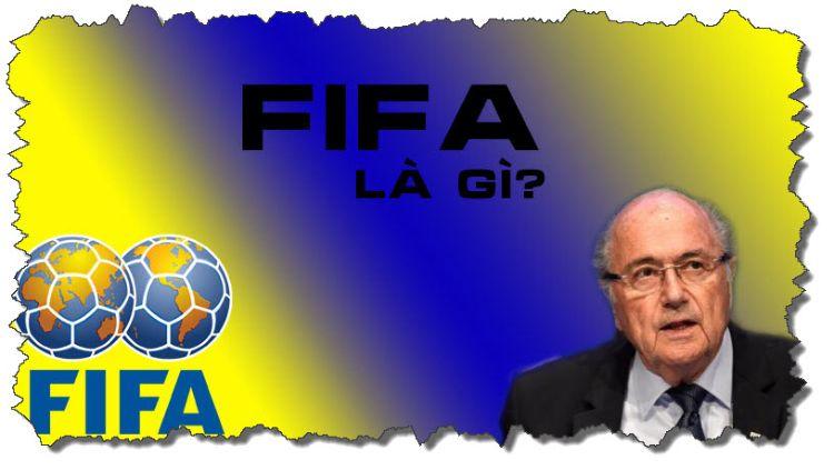 fifa là gì